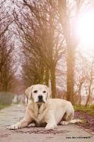 Dierenfotografie_20