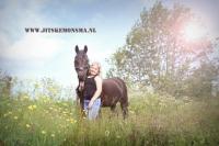 Dierenfotografie friesland_19