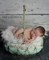 newborn friesland_1