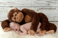 newborn friesland_5