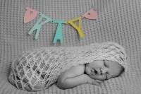 newborn friesland_7