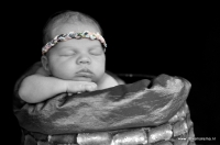newborn Senna_8