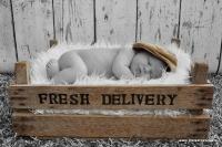 Newborn Timo