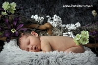 Newbornfotografie_13