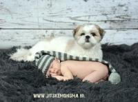 Newbornfotografie_21