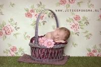 newbornfotografie_7