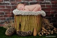 Newbornfotografie Friesland_9