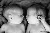 Newbornshoot Friesland_14