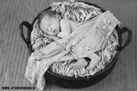 Newbornshoot Friesland_30