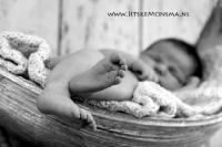 Newbornshoot Friesland_4