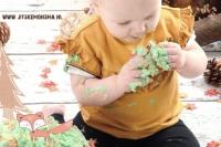cakesmash smash the cake friesland_3