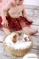 cakesmash smash the cake friesland_8